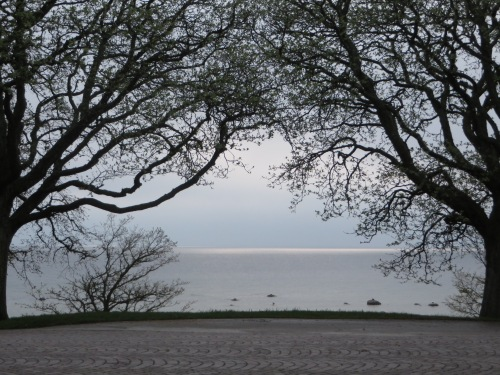 Visby waterfront